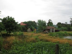 Harmony Farm orphanage