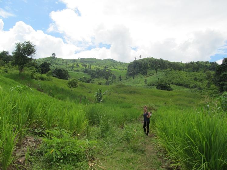 Beautiful countryside, Laos