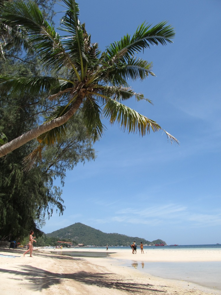 The beautiful Koh Tao