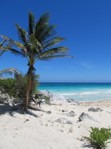 A perfect beach to be castaway on (Tulum, Riviera Maya).