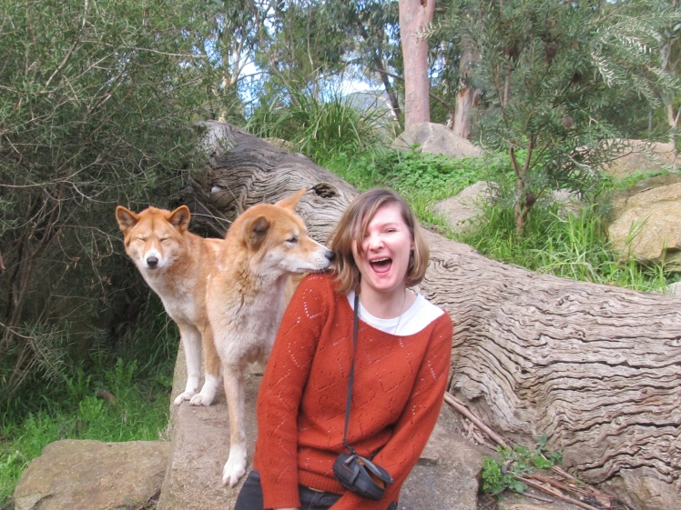 Experiences such as getting licked by a dingo have changed me.