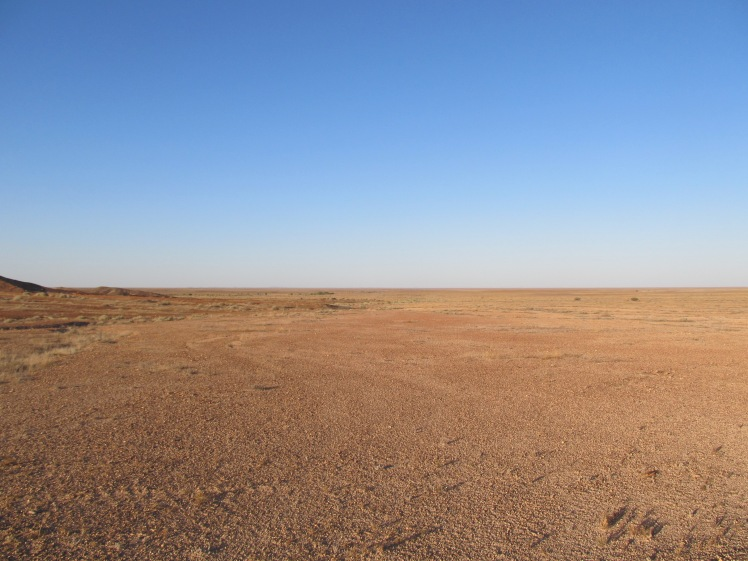 Looking out over the 'moon plains', near Coober Pedy.