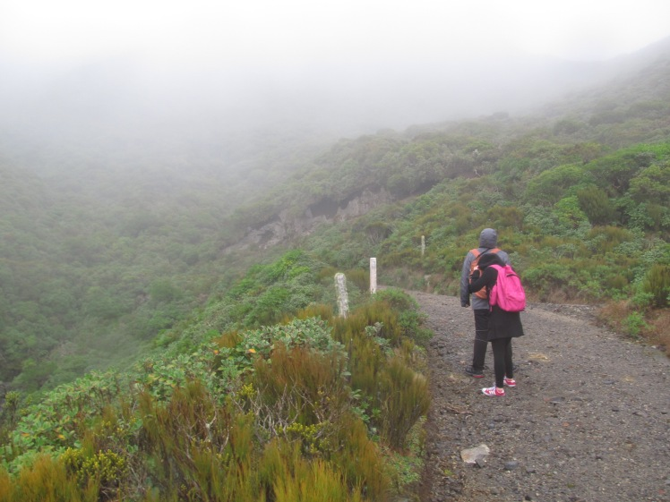Hiking through clouds.