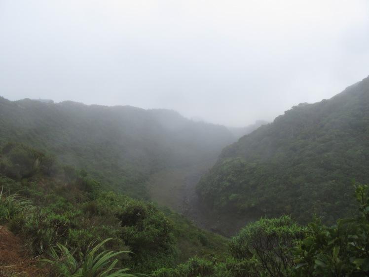 The view from halfway up Taranaki.