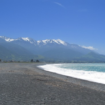 the stunning shores of Kaikoura.