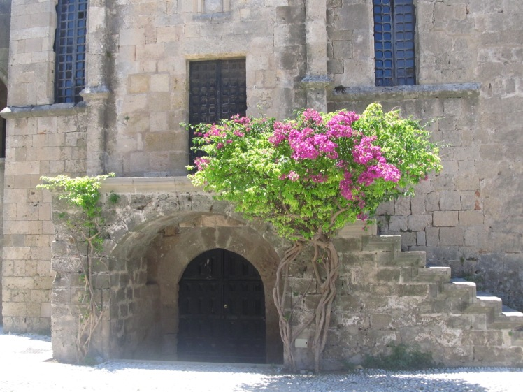 Blossom in Rhodes.