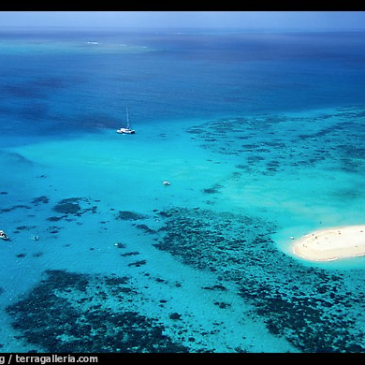 Great Barrier Reef (http://www.terragalleria.com).