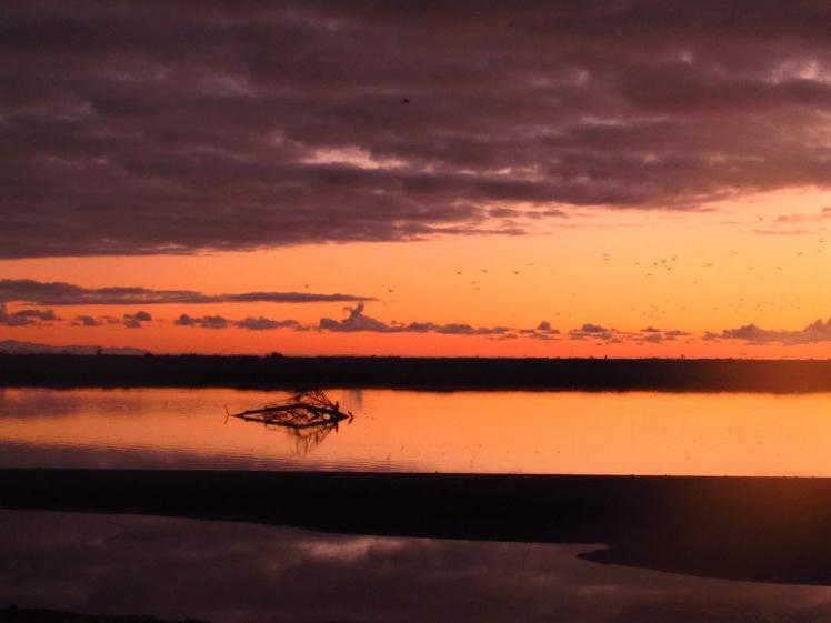 A New Zealand sunset.