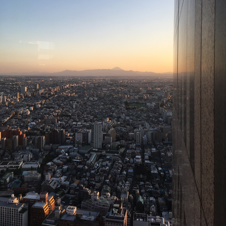 Views across Tokyo